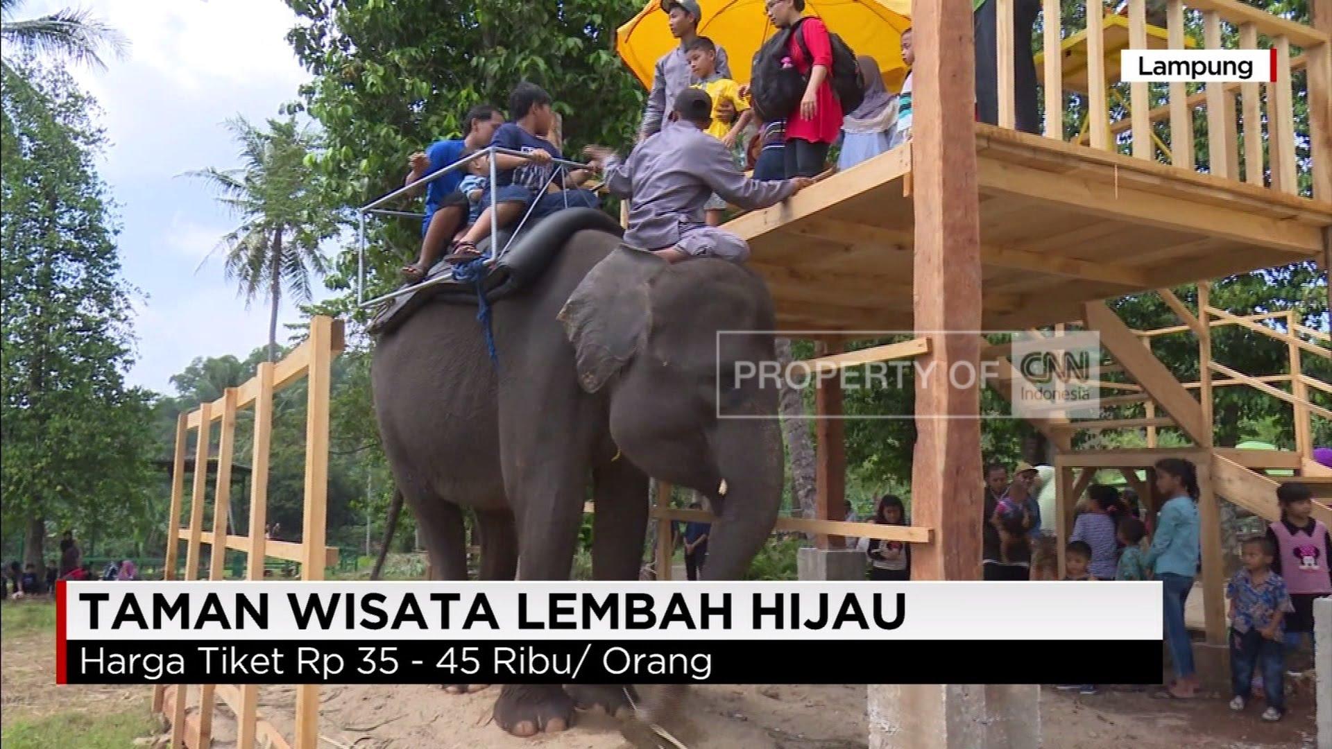 Tunggang Gajah Taman Wisata Lembah Hijau Youtube Lampung Kota Bandar