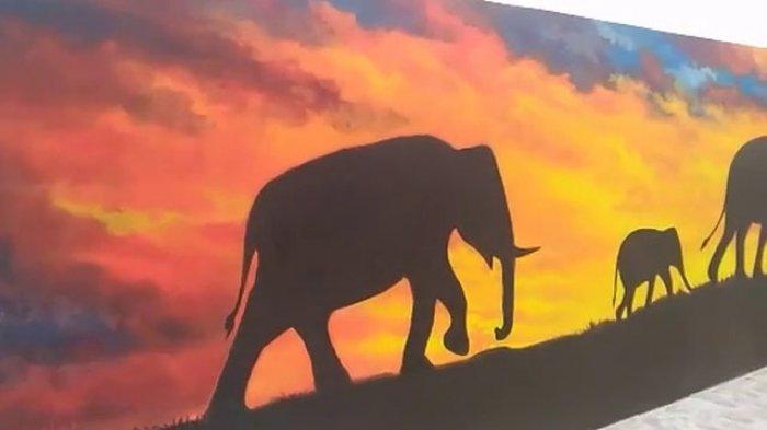 Video Yuk Intip Taman Gajah Kawasan Saburai Tribun Lampung Kota