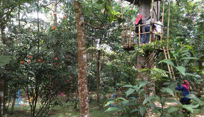 Edukatif Taman Kupu Gita Persada Bandar Lampung Wisata Hutan Kera