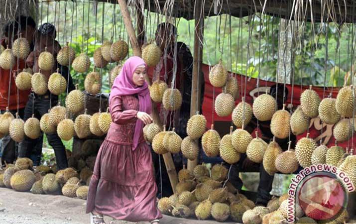 Berita Wisata Durian Lembah Hijau Bandarlampung Analisadaily Taman Kota Bandar