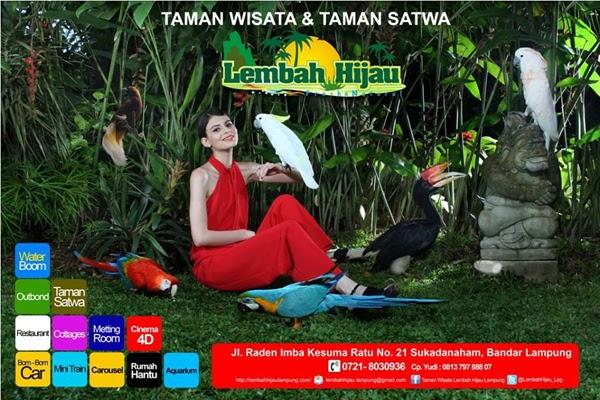 Harga Tiket Masuk Lembah Hijau Lampung Beserta Paket Hematnya Taman