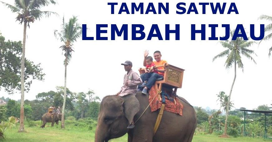 Interaksi Satwa Taman Wisata Lembah Hijau Bandar Lampung Duniaindra Kota