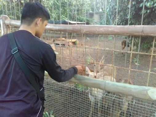 Lembah Hijau Jadi Tempat Terdekat Warga Bandar Lampung Lihat Beragam
