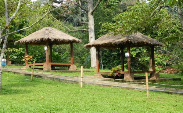 Lembah Hijau Lampung Ragam Wisata Indonesia Pondokan Bernuansa Alami Taman