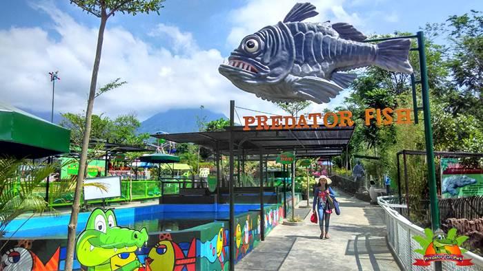 Daftar Tempat Wisata Kota Batu Malang Wajib Dikunjungi Predator Fun