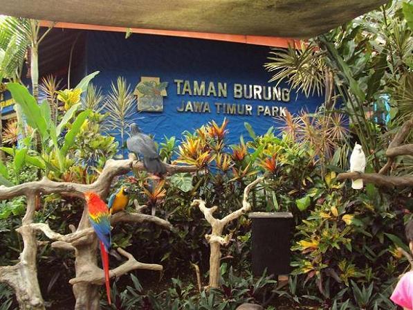 Jatim Park 1 Kota Batu Jawa Timur Http 2 Bp