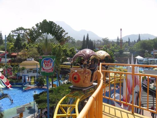 Jatim Park 1 Picture Jawa Timur Batu Tripadvisor Kota