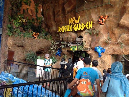 Reptile Garden Picture Batu Secret Zoo Jawa Timur Park 2