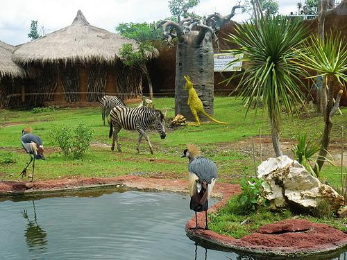 Secret Zoo Museum Satwa Jawa Timur Park 2 Malang Guidance