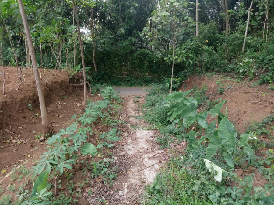 Tanah Dijual Jual Dekat Jatim Park 3 Kota Batu Jawa
