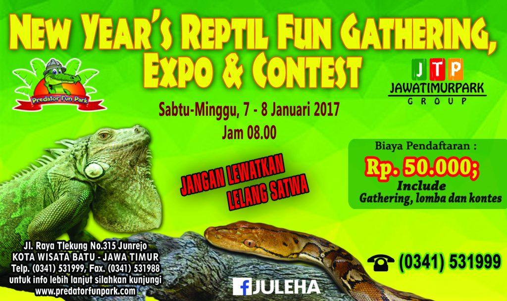 Baruan Bareng Buaya Predator Fun Park Batu Malanglife Reptile Contest