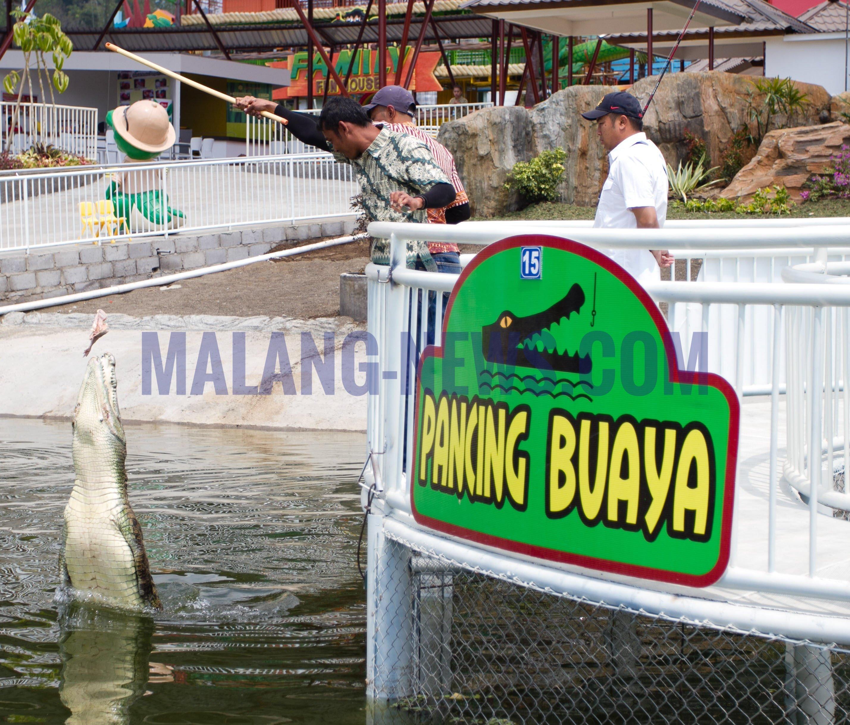 Mbois Predator Fun Park Kota Batu Beri Diskon Bagi Pemegang
