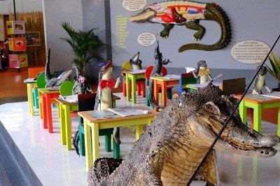 Serangan Buaya Kota Batu Lingkar Malang Taman Predator Fun Park
