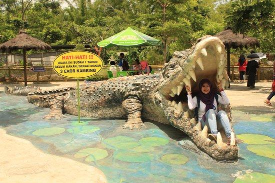 Spot Foto Predator Fun Park Batu Malang Picture Kota