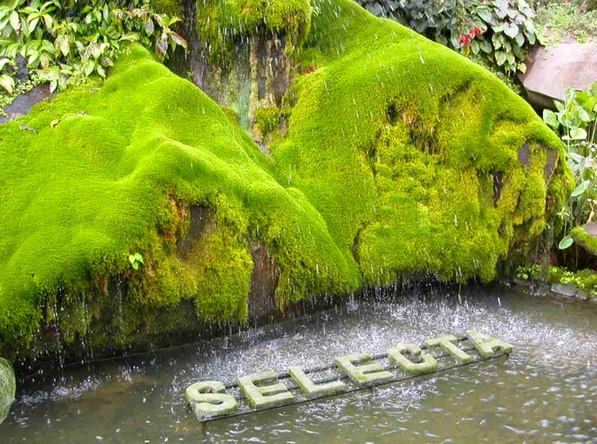 Alamat Harga Tiket Masuk Taman Rekreasi Selecta Batu Destinasi Wisata