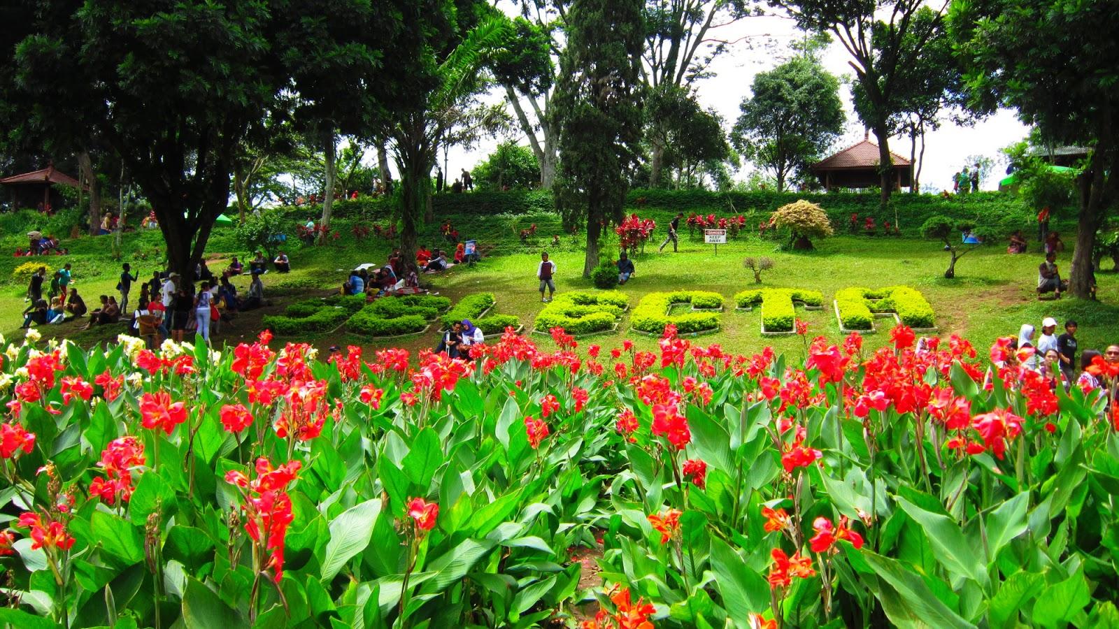 Ikutilangkahkaki Travel Social Food Malang Hari Ketiga Apel Kebun Bunga