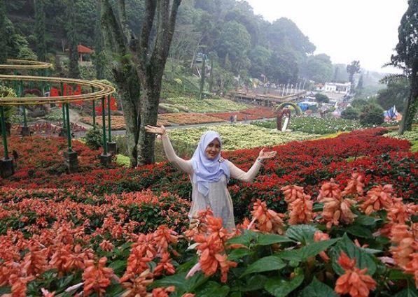 Kebun Bunga Wahana Kawasan Wisata Batu Selecta Malang Bagi Memiliki