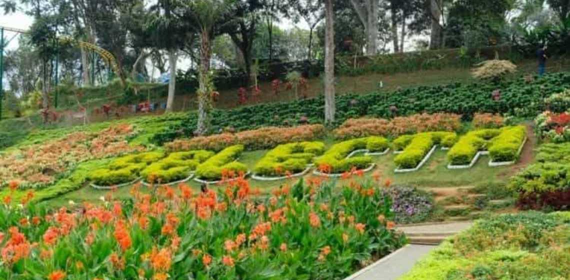 Keindahan Wahana Seru Taman Wisata Selecta Batu Malang Ulinulin Kota