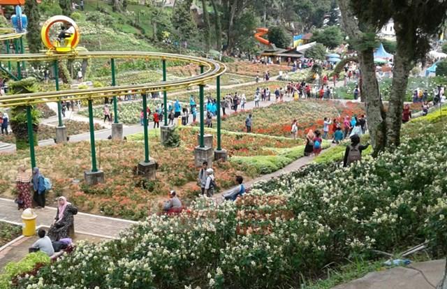 Menikmati Keindahan Taman Wisata Selecta Kota Batu Cendana News Suasana