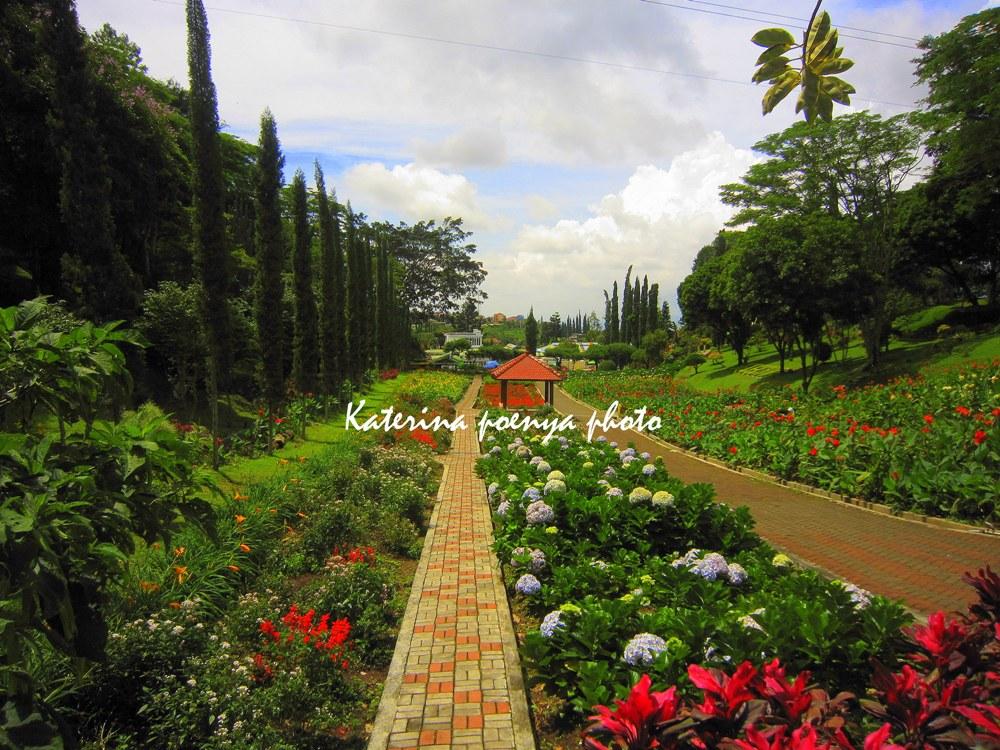 Merengkuh Indah Pagi Taman Bunga Selecta Katerina Hari Terakhir Kota