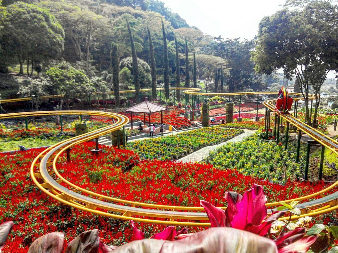 Objek Wisata Kota Batu Wajib Kunjungi Siap Liburan Taman Selecta