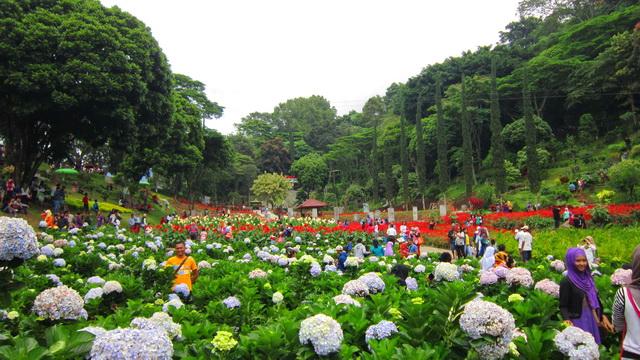 Selecta Garden Kota Batu Malang Exotic Kangpoer Taman