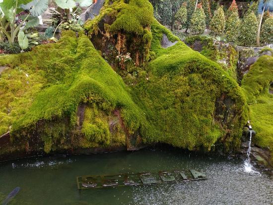 Selecta Kota Batu Picture Recreational Park Taman