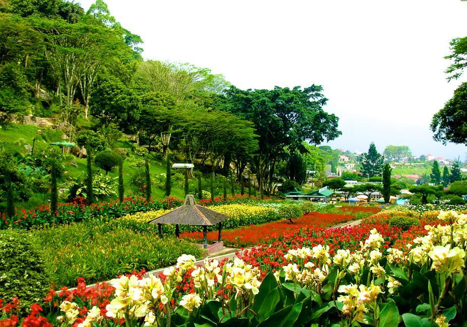 Selecta Surga Taman Bunga Kota Batu
