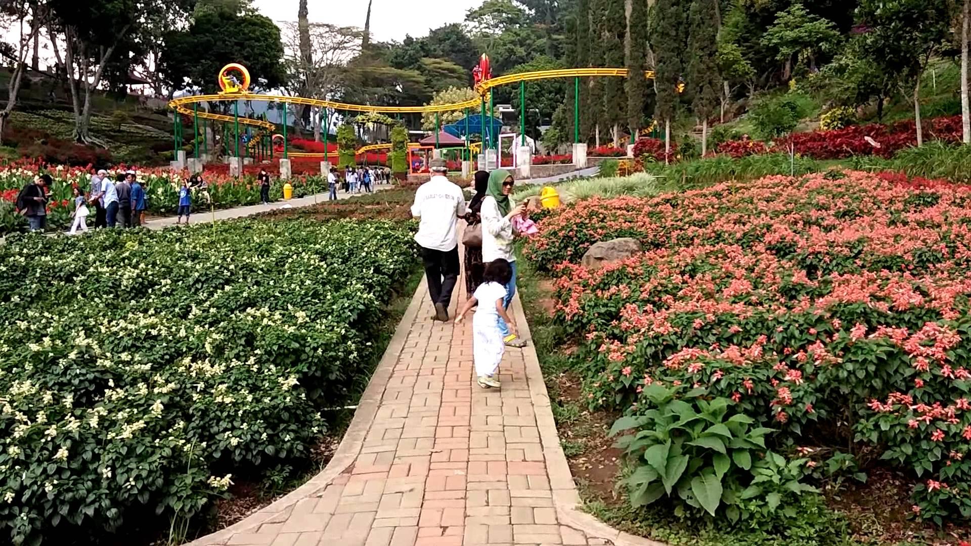 Selecta Taman Bunga Batu Malang Youtube Kota
