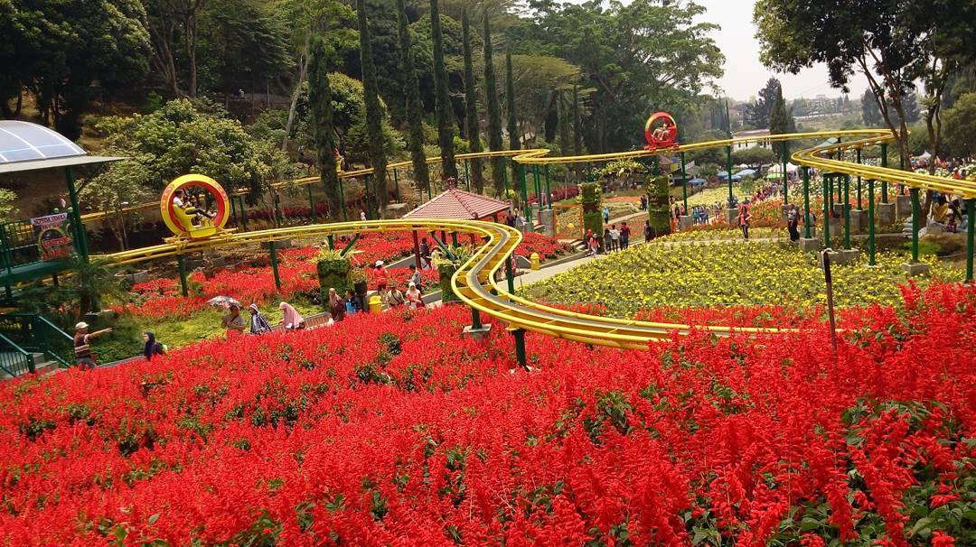 Selecta Taman Bunga Cantik Batu Jawa Timur Kota