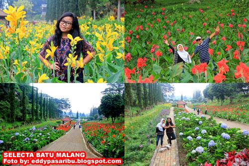 Selecta Taman Seribu Bunga Kota Batu Malang Eddy Pasaribu Superblog