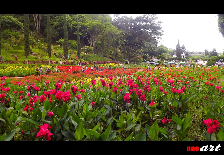 Surga Bunga Taman Rekreasi Selecta Kota Batu Nnoart
