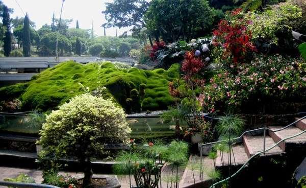 Taman Bunga Selecta Kota Batu Jawa Timur Https Travel Detik