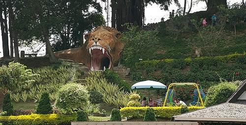 Taman Rekreasi Selecta Batu Malang Kebun Bunga Menawan Kota