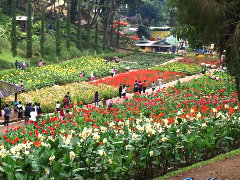 Taman Rekreasi Selecta Batu Malang Youtube Kota