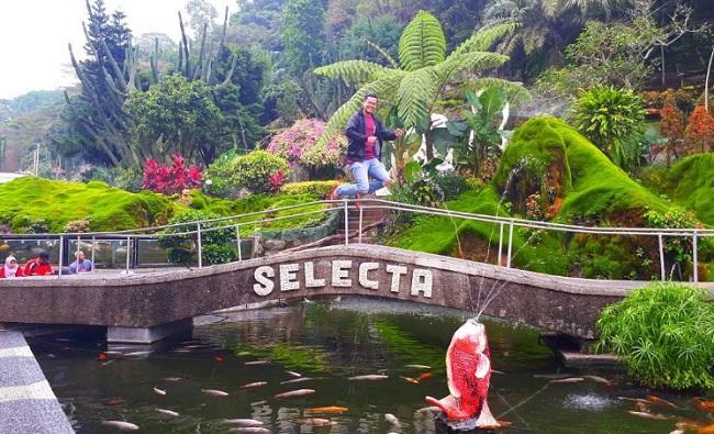 Taman Rekreasi Selecta Harga Tiket Alamat Wahana Hotel Kota Batu
