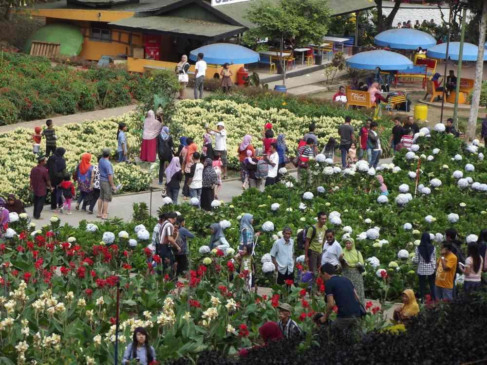 Taman Rekreasi Selecta Kota Batu Tua Tak Menua Sandi Iswahyudi