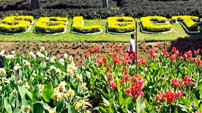 Taman Selecta Ubah Kota Batu Bak Bunga Eropa Viva Photo
