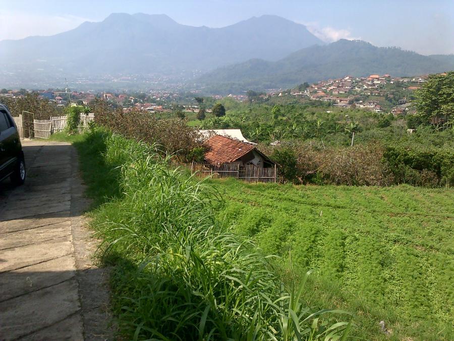 Tanah Dijual Murah View Bagus Diatas Taman Rekreasi Selecta Kota