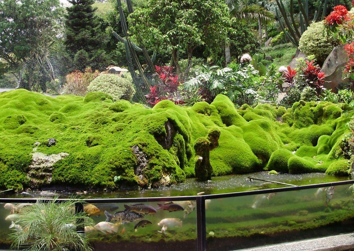 Tempat Wisata Taman Selecta Batu News Related Galery Kota