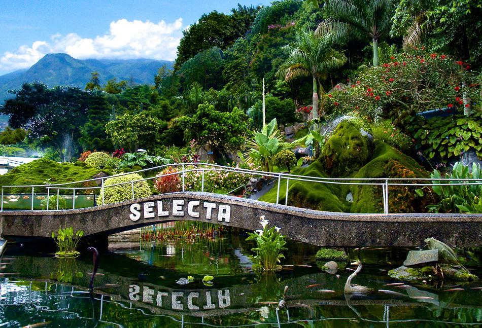 Wisata Alam Taman Bunga Selecta Batu Malang Nusantara Mata Kota