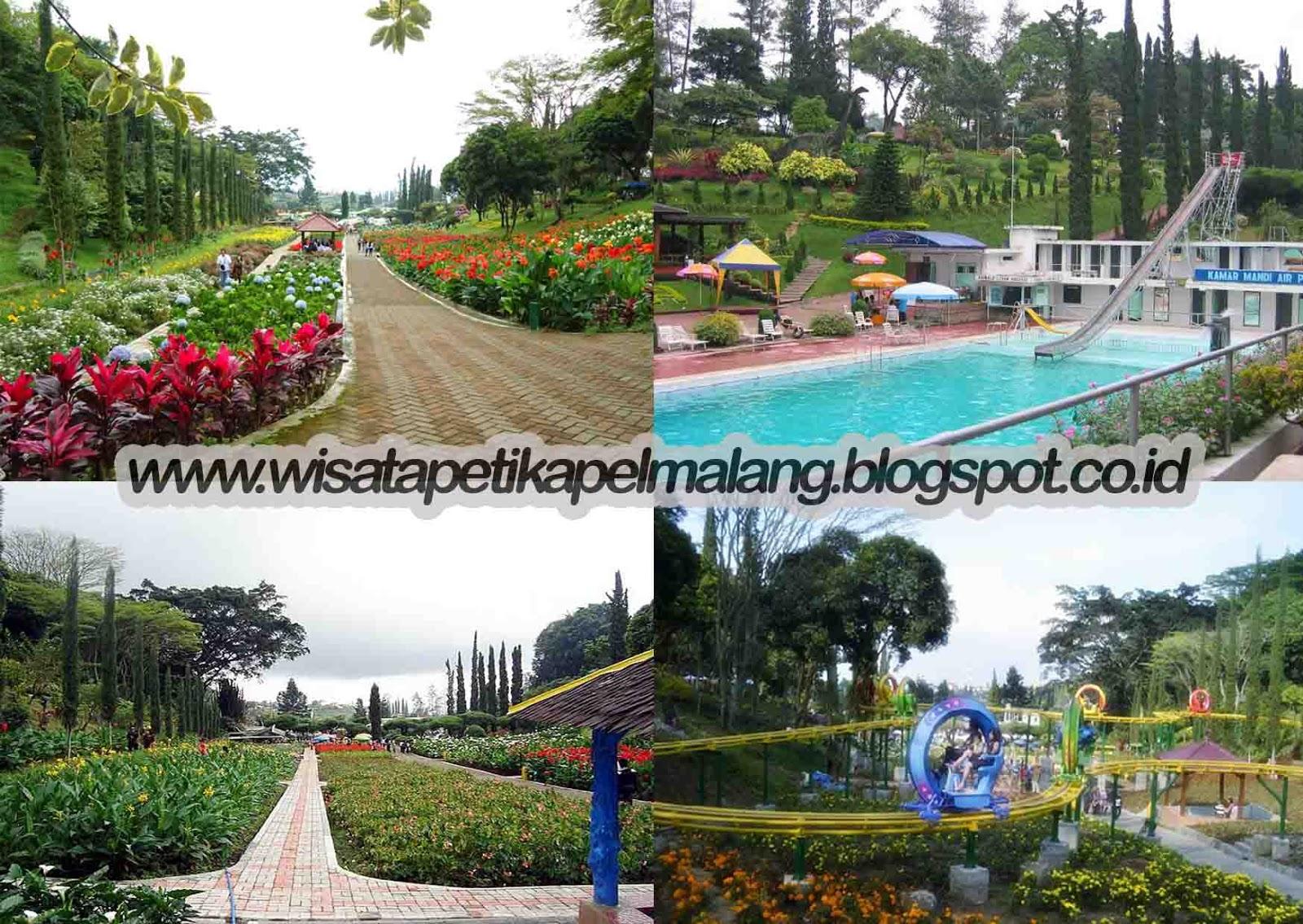 Wisata Petik Apel Taman Selecta Malang Kota Batu Tempat Jawa