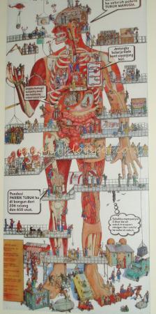 Bagong Adventure Museum Tubuh Manusia Picture Human Body Kota Batu