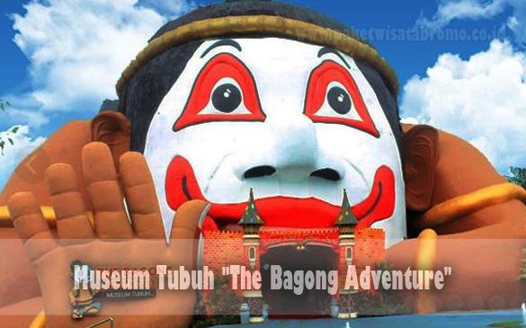 Museum Tubuh Batu Bagong Adventure Paket Wisata Bromo Kota