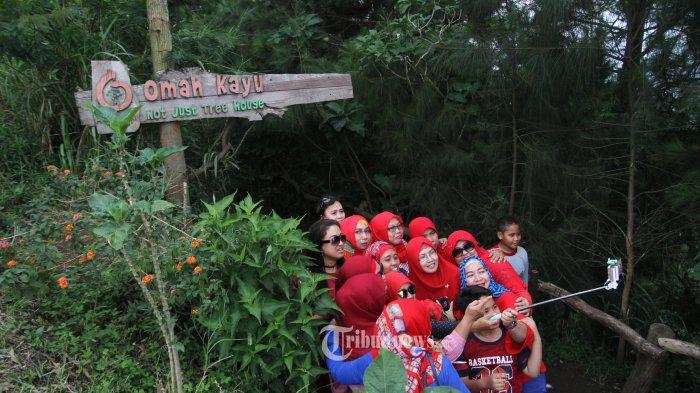 Destinasi Wisata Omah Kayu Kota Batu Malang Tribunnews Pengunjung Menikmati