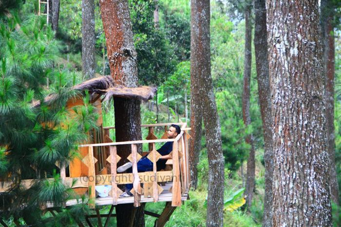 Gunung Sebagai Surganya Paraglider Oleh Sudiyanti Masdi 14131068811140643512 Wisata Paralayang