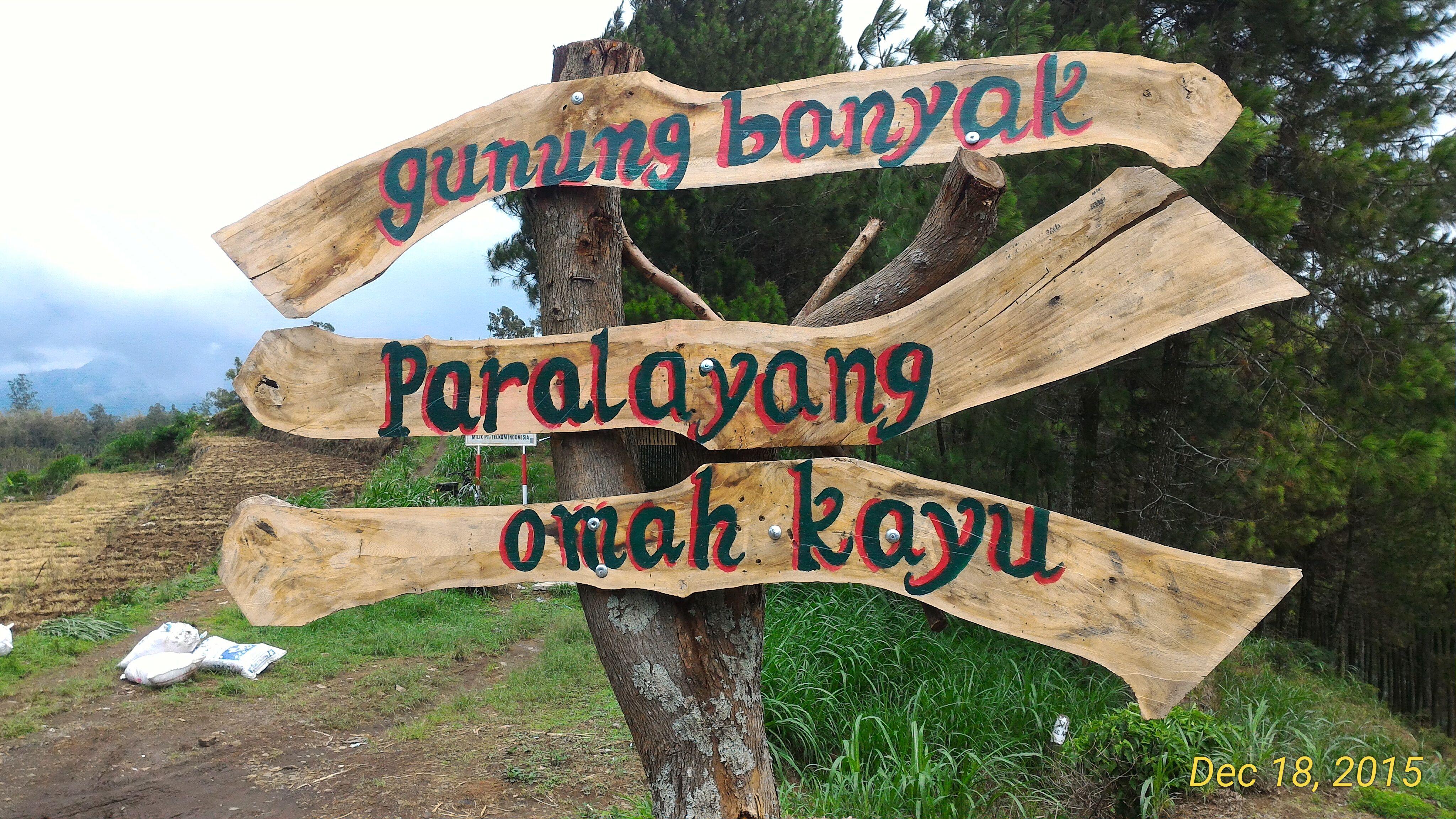 Omah Kayu Atas Pohon Evazahra Plang Paralayang Gunung Wisata Kota
