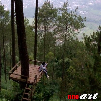 Omah Kayu Batu Malang Penginapan Unik Atas Pohon Nnoart Foto