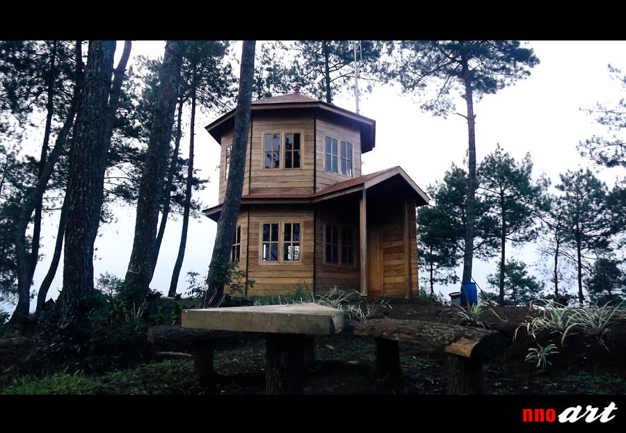 Omah Kayu Batu Malang Penginapan Unik Atas Pohon Nnoart Rumah