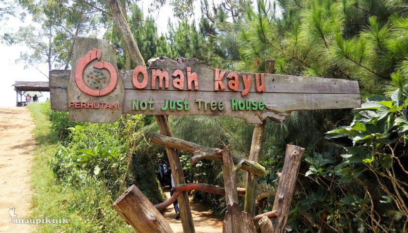 Omah Kayu Paralayang Batu Malang Piknik Tree House Wisata Kota